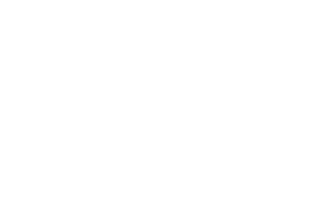 logo3_bianco